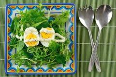 A fresh summer salad Royalty Free Stock Photography