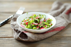Fresh summer salad in bowl Royalty Free Stock Photos