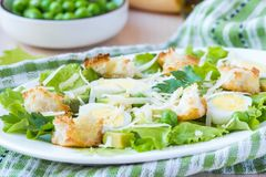 Fresh summer salad with lettuce, eggs, cheese, croutons, green Stock Photography
