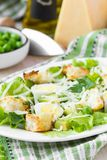 Fresh summer salad with lettuce, eggs, cheese, croutons, green Stock Image
