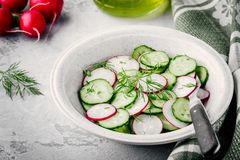 Fresh summer salad with radish and cucumber, green onions and dill. In bowl Royalty Free Stock Photography