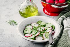 Fresh summer salad with radish and cucumber, green onions and dill. In bowl Stock Images