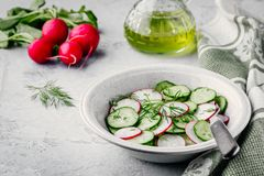 Fresh summer salad with radish and cucumber, green onions and dill. In bowl Royalty Free Stock Image