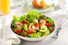 Fresh summer salad with shrimp, avocado and tomato stock image