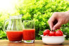 Free Fresh Summer Tomato Drink Royalty Free Stock Images - 14017759
