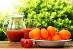 Free Fresh Summer Tomato Drink Stock Photos - 14017943