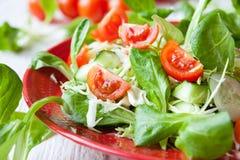 Fresh Summer Vegetable Salad Stock Images