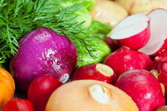 Fresh summer vegetables. Closeup of fresh summer vegetables - background Royalty Free Stock Photography