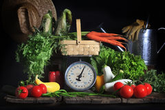 Fresh Summer Vegetables. An array of fresh vegetables on old farm table, carrots on vintage scale, tomatoes, various squash, green beans, corn and greens around royalty free stock photography