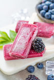 Fresh summer wild blueberries and brambleberry, home made sorbe. T ice cream popsicles stock photography