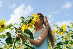 Fresh sunflower. An image of a girl smelling fresh sunflower royalty free stock photography