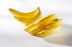 Fresh sunny bananas on a white background. Fresh bunches of sunny bananas on a white background stock images