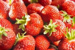 Fresh sunny strawberries. Group of fresh sunny strawberries stock images