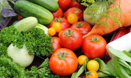 Fresh svegetables Stock Photo