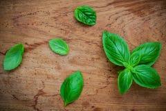 Fresh sweet basil leaves on shabby teak wood background. Sweet b Stock Photo