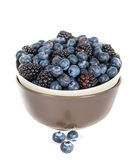 Fresh sweet blueberries and blackberries. On a white background Royalty Free Stock Photos