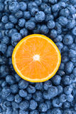 Fresh and sweet blueberries with half of juicy orange as a background. Nutritious orange in a center of bilberries. Stock Photography