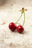 Fresh Sweet Cherries Royalty Free Stock Photo