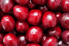 Fresh sweet cherries. Food fruit background Stock Photos