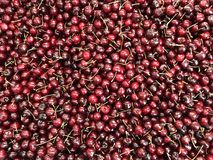 Fresh sweet cherries on fruits market Stock Photo