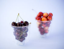 Fresh sweet cherries in a glass Stock Images