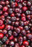 Fresh sweet cherries Royalty Free Stock Photos
