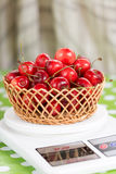 Fresh sweet cherries in the wooden basket Royalty Free Stock Photo