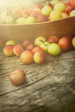 Fresh sweet cherry Stock Photos