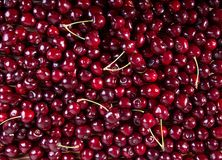Fresh sweet cherry. Food background stock images