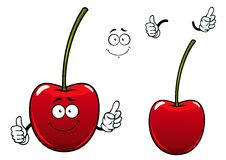 Fresh sweet cherry fruit cartoon character. Happy cherry fruit cartoon character showing fresh glossy red berry with long green stalk and thumb up gesture suited Stock Images