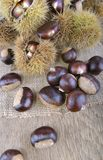 Fresh sweet chesnutson a table royalty free stock images