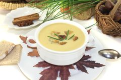 Fresh sweet chestnut soup Stock Photography