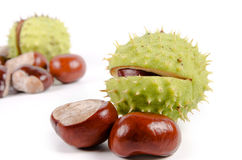 Fresh sweet chestnuts Royalty Free Stock Photos
