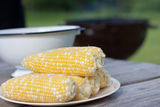 Fresh sweet corn for BBQ party Royalty Free Stock Photography