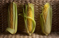 Fresh sweet corn on cobs . Healthy organic food Stock Photography