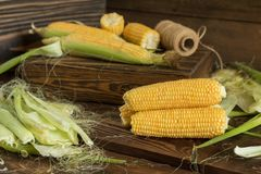 Fresh sweet corn on cobs on rustic wooden table, close up. Toned. Shallow depth of field Royalty Free Stock Images