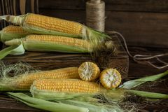 Fresh sweet corn on cobs on rustic wooden table Stock Images