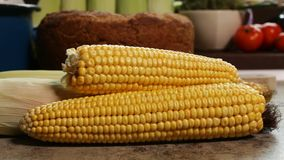 Fresh sweet corn cobs on the table - closeup stock video footage
