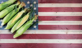 Fresh sweet corn on faded wooden flag of United States of Americ Stock Photography