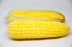 Fresh sweet corn on  the white background. Fresh sweet corn from con tree on  the white background Royalty Free Stock Images