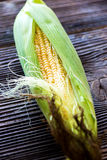 Fresh sweet corn Royalty Free Stock Photography