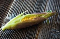 Fresh sweet corn Royalty Free Stock Image