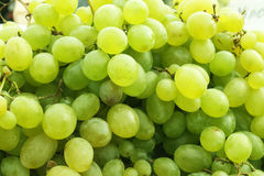 Fresh sweet green. Fresh green grapes sold in the Riga central market on a sunny beautiful day Royalty Free Stock Images