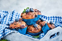 Fresh homemade delicious blueberry muffins Royalty Free Stock Images