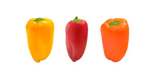 Fresh and sweet mini peppers isolated on white background Royalty Free Stock Photos