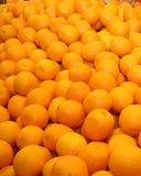 Fresh sweet orange Royalty Free Stock Image