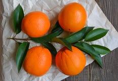 Fresh sweet oranges Stock Images