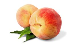 Fresh sweet peaches on a white background. Fresh sweet peach peaches green red yellow Stock Image