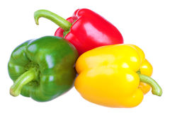 Fresh sweet pepper Stock Photography