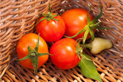 Fresh sweet peppers and tomatoes Royalty Free Stock Images